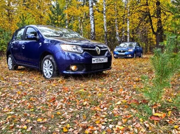 Renault Logan против Renault Sandero: грибные споры