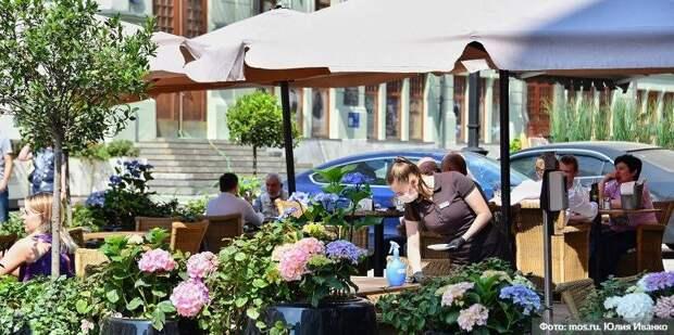 Рестораторы Москвы поддержали внедрение системы QR-кодов в дневных заведениях. Фото: Ю.Иванко. mos.ru