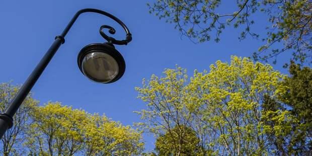 Более 150 новых фонарей установят в Северном Тушине по просьбам жителей