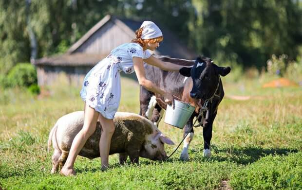 Ленобласть предложит туристам уединенный отдых в фермерских хозяйствах
