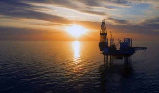 Шельф Черного моря «Нафтогаз» будет бурить в 2022 году
