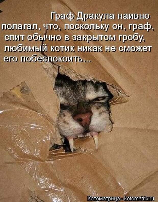 1464560126_49