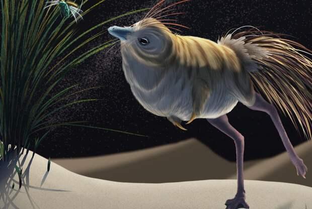 Учёные обнаружили динозавра, похожего на сову. Он тоже охотился по ночам