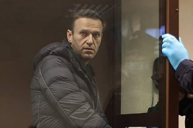 AgoraVox (Франция): Навальный – западный проект против России