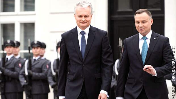 Польша и Литва поспорили с Макроном о «смерти мозга» НАТО