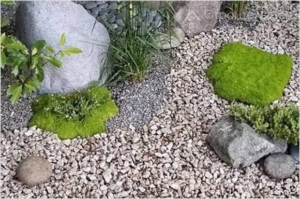 Как сделать гравийный сад