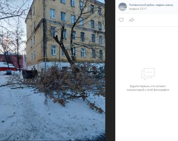 На Михалковской спиленное дерево заблокировало проезд