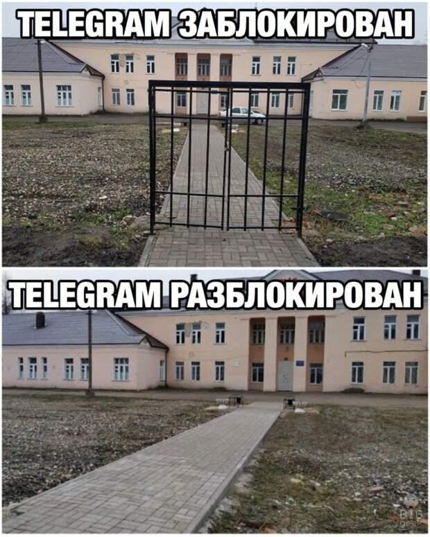 12 мемов про разблокировку Telegram