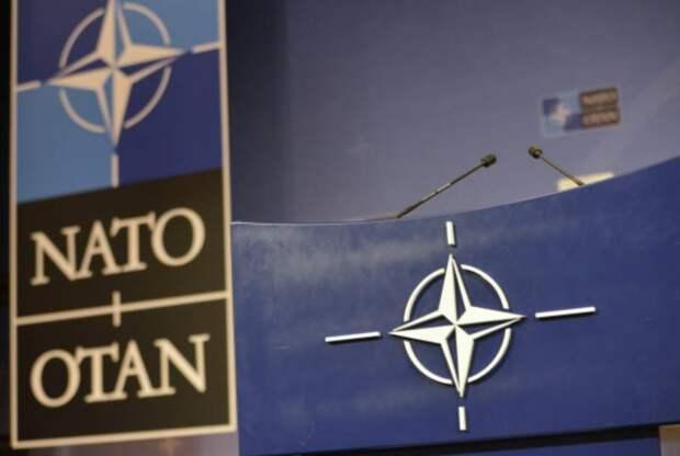 Атлантический совет НАТО рассорился из-за России