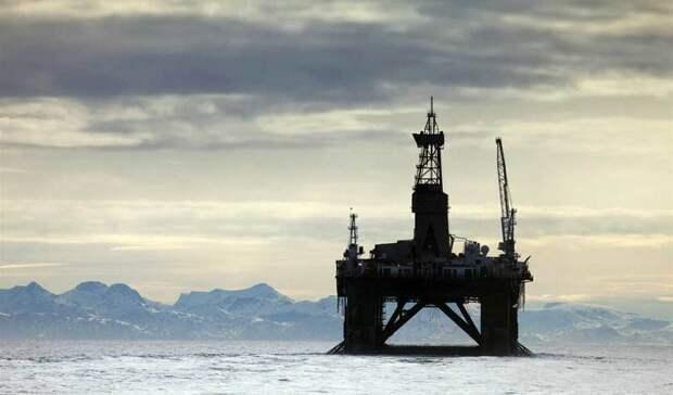 Допустить нашельф Арктики российские ииностранные компании предлагает Минвостокразвития