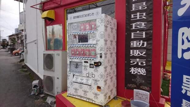 В Японии установили автомат по продаже съедобных насекомых