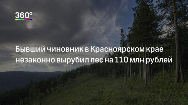 Бывший чиновник в Красноярском крае незаконно вырубил лес на 110 млн рублей