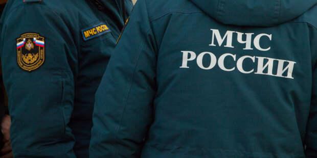 Девушка упала в Москву-реку около Кремля во время селфи