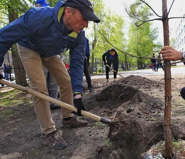 В Удмуртии заложили аллею памяти в честь ветеранов Великой Отечественной войны