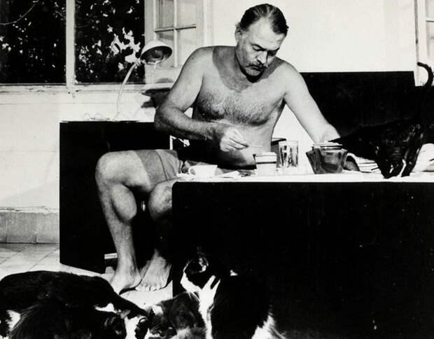 Эрнест Хемингуэй и несколько кошек у его ног завтракают.