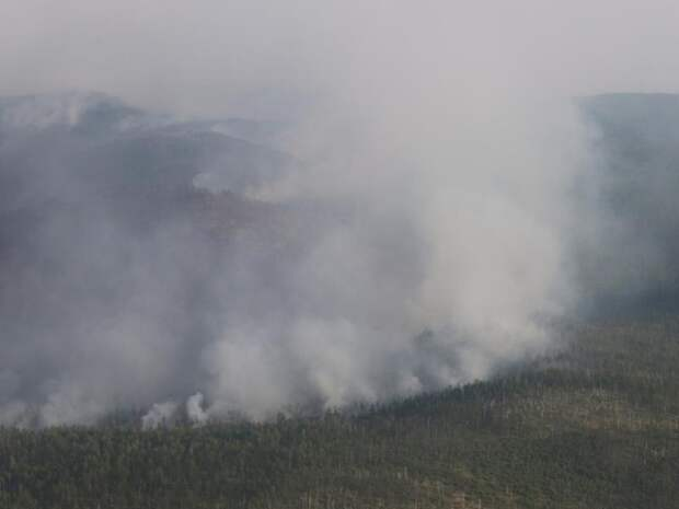 Лесной пожар тушат в Балейском районе Забайкалья