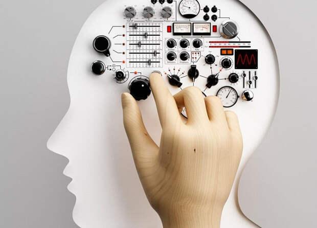 Тест: какой у вас склад ума – рациональный, эмоциональный или интуитивный?
