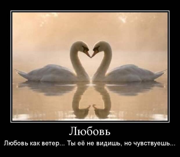 Демотиваторы от Алексея ко дню влюбленных