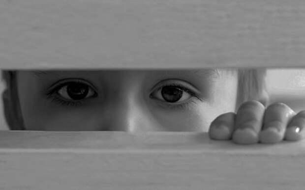 Находка пограничников: ребенка спрятали в передней панели BMW X5