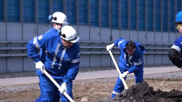 Нефтеперерабатывающий завод в Москве высадил деревья в память о погибших в Великой Отечественной войне