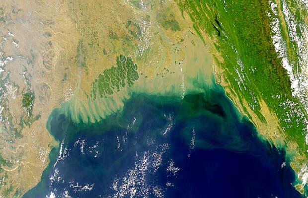 """В Индийском океане найдена огромная """"мертвая"""" зона. Таких зон с каждым годом все больше"""