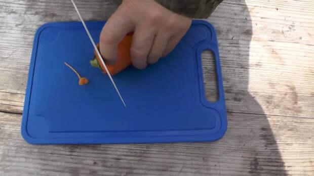 Простой способ сохранить сочную морковь без погреба