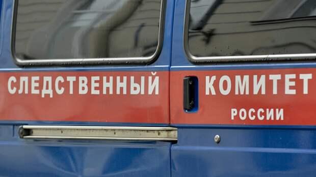 СК допросил машиниста поезда после гибели девочки в Новгородской области