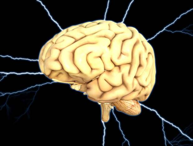 Тайные миры мозга. Сколько личностей помещается в голове?