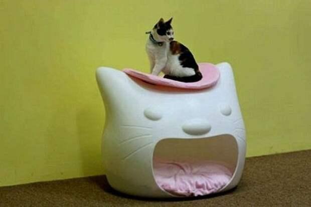 cathouse12 Дизайн для котов