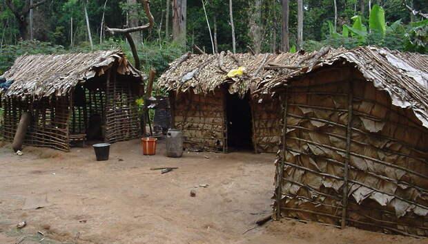 Жители Подольска смогут узнать об обычаях племени пигмеев 27 февраля