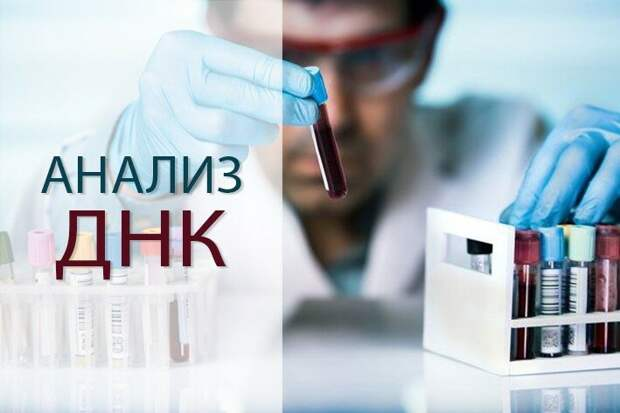Фото из открытого источника Яндекс, без рекламных целей. В качестве примера