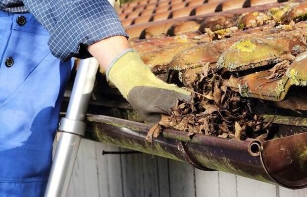 Дешево и сердито: как защитить водосточный желоб от листвы и прочего мусора