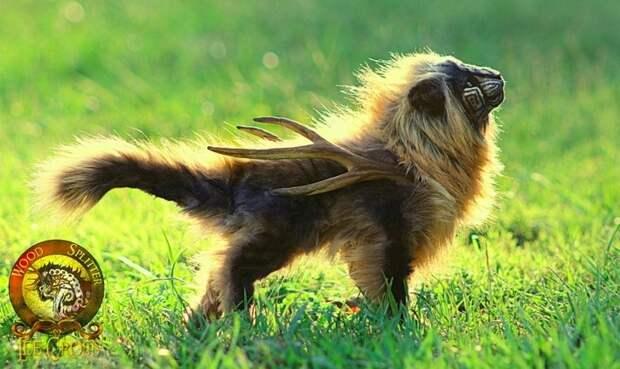 Животные, которых не создавала природа. Невероятные создания Ли Кросс