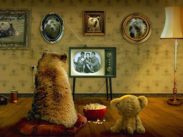 Госдума обеспечила бесплатный доступ к просмотру ТВ в интернете