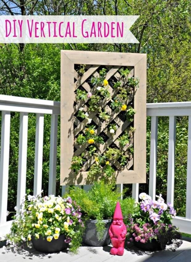 Оригинальный декор стен - вертикальное озеленение.