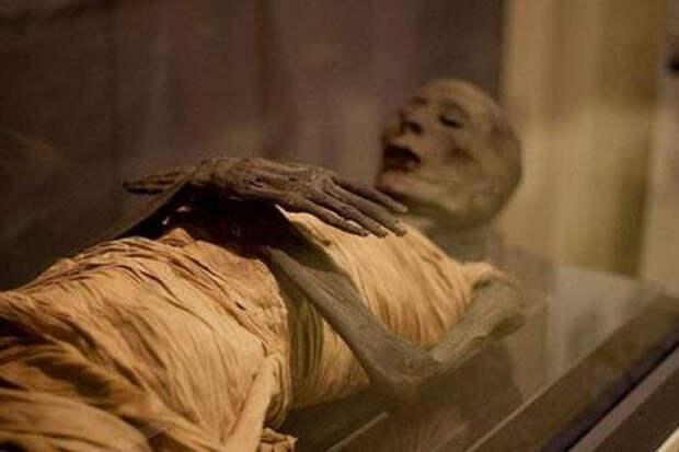 Ученые восстановили ДНК египетских мумий и определили предков египтян
