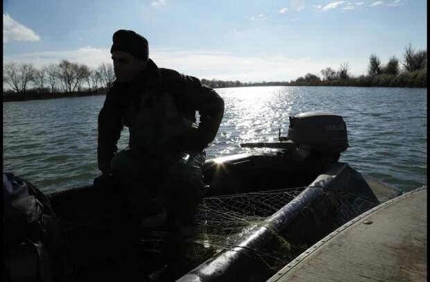 Экологи бьют тревогу из-за браконьерской ловли рыбы на Днестре