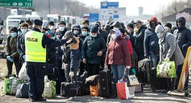 Уехавшие из Польши украинские заробитчане планируют вернуться ...