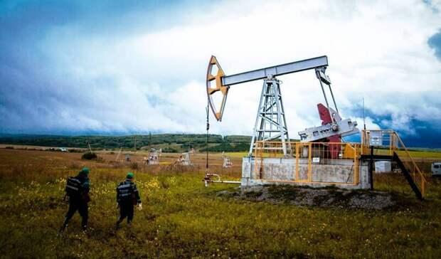 На5% снизились доказанные запасы нефти иконденсата «Татнефти» в2020 году