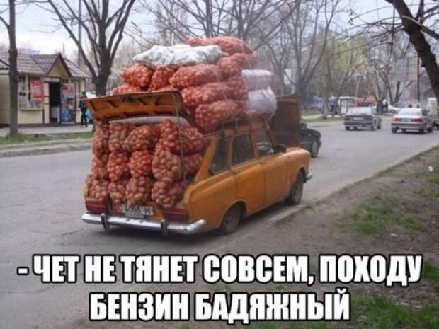 1438858368_avtoprikoly-12