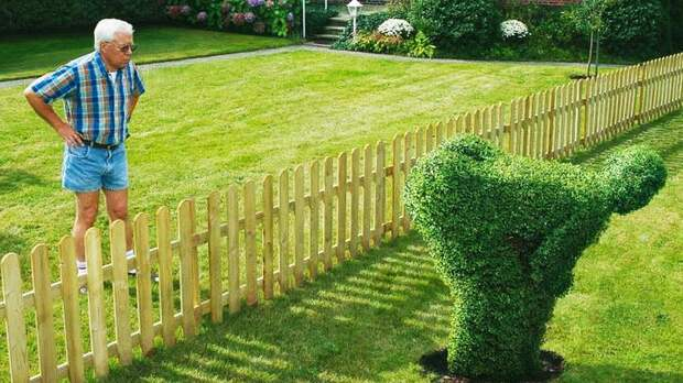 Должны ли соседи участвовать в постройке забора? Разбираемся в сложном вопросе