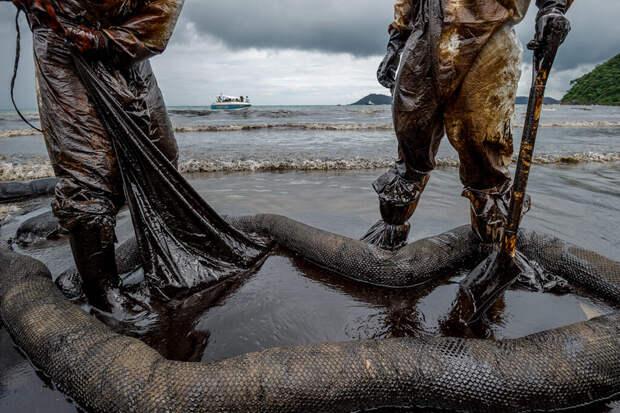 Экологи оценили объем разлитой под Новороссийском нефти