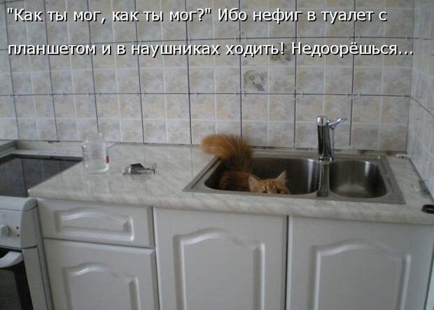 1450431450_kotomatrica-13