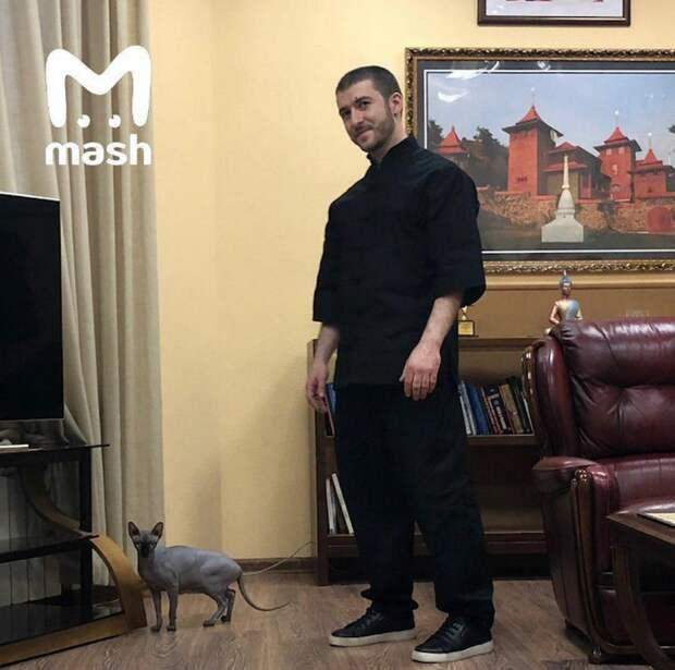 Кот Алибасова Чуча — минус 800 тысяч и новый чужой кот в офисе