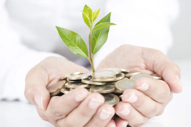 Эльвира Набиуллина дала советы по личным финансам
