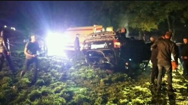 В Евпатории водитель не справился с управлением, снес дерево и дорожные знаки