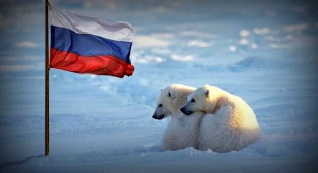Россия представила перспективные проекты для освоения Арктики