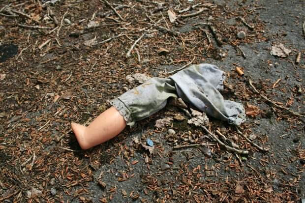 Двое детей погибли в Удмуртии, упав в компостную яму