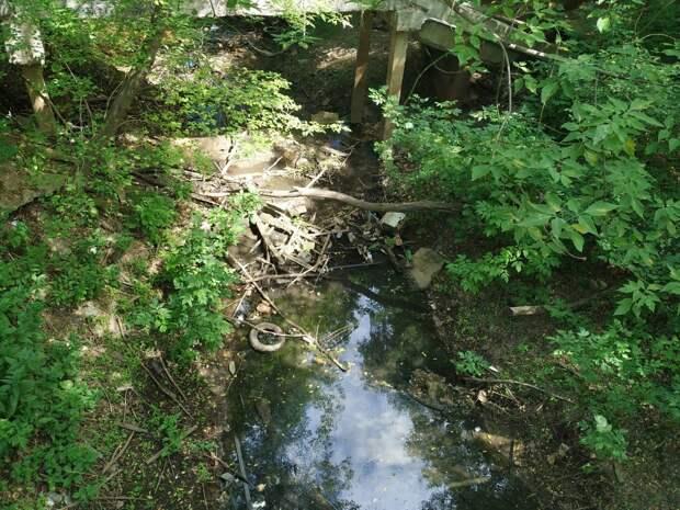 Денис Егоров проверил ход подготовительных работ порасчистке реки Борзовки вНижнем Новгороде