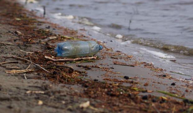 Берег озера Банное в Оренбурге очистят от мусора